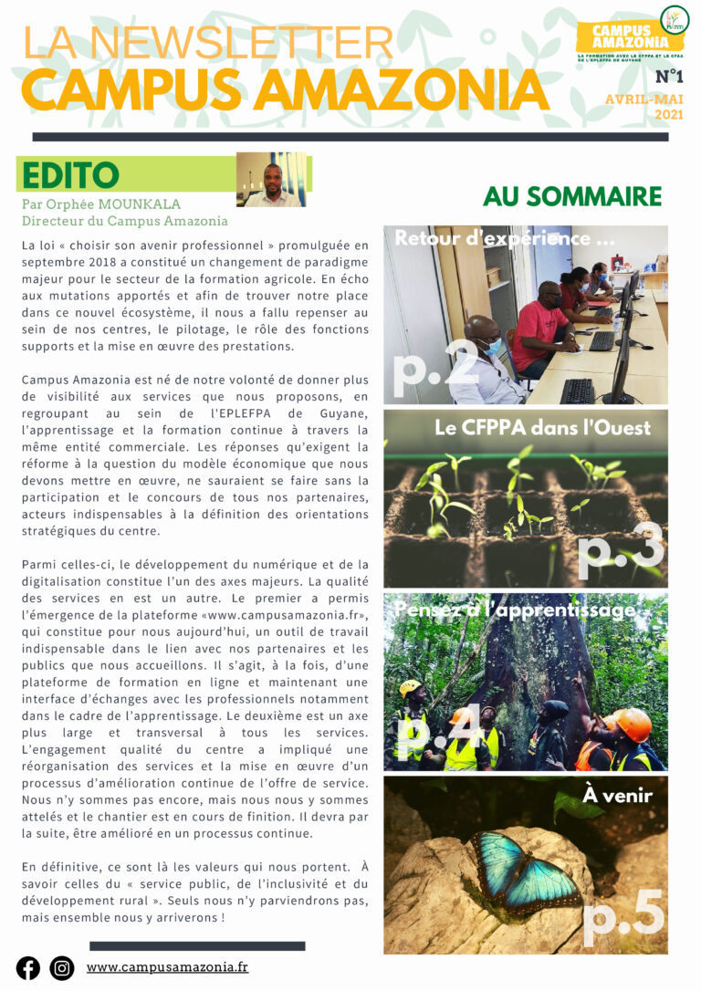 Read more about the article Newsletter – Édition n°01